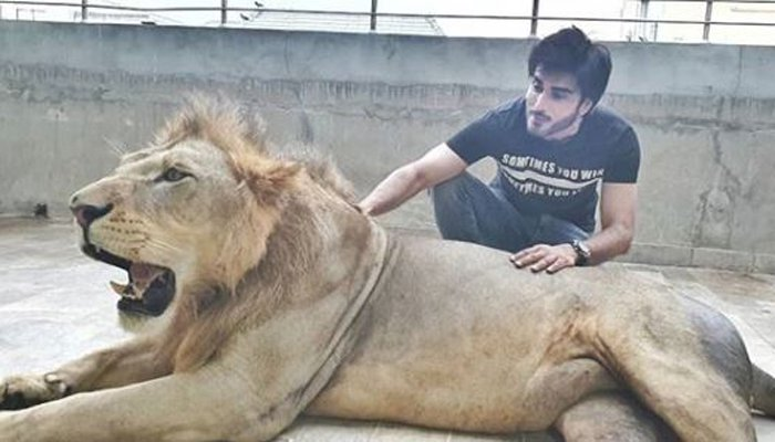 Imran Abbas responds to animal abuse criticism after posing with a lion