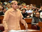 Maryam arrested to divert attention from failed Kashmir policies: Shehbaz